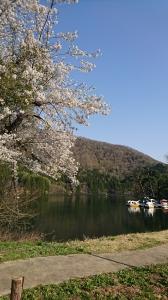GWの北竜湖